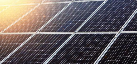 mariana-chaim-blog-sustentabilidade-o-novo-lema-do-mercado